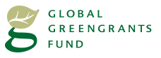 global green grants